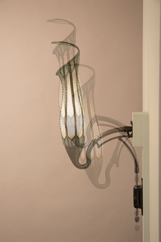 Pitcher Plant Lamp showing range of motion